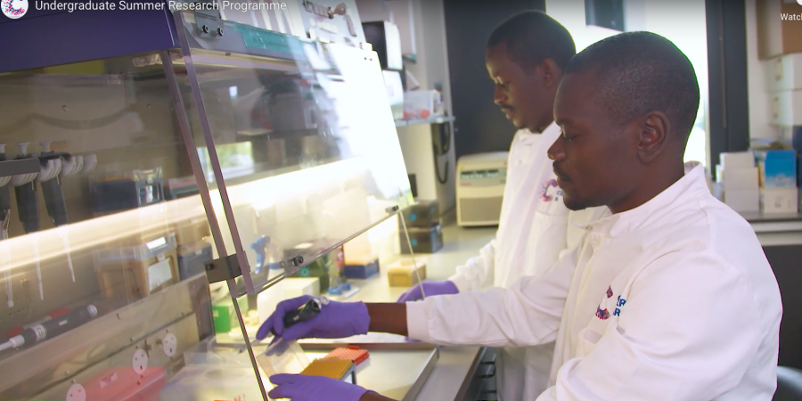 Applications open Summer Research Programme hosted by CRUK Cambridge Institute