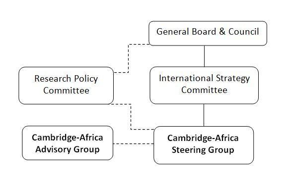 Cambridge university international strategy